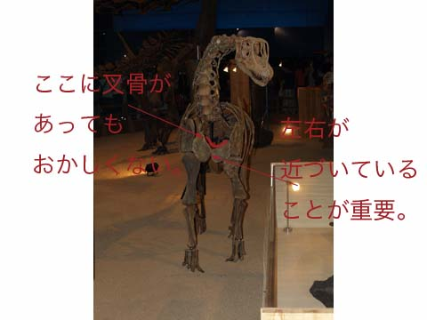 blog06071702.jpg
