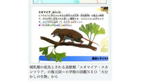 blog08061301.jpg