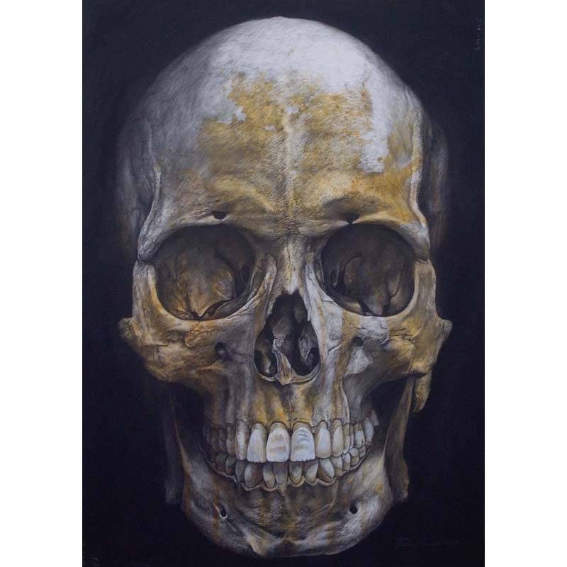 The unknown skull male
