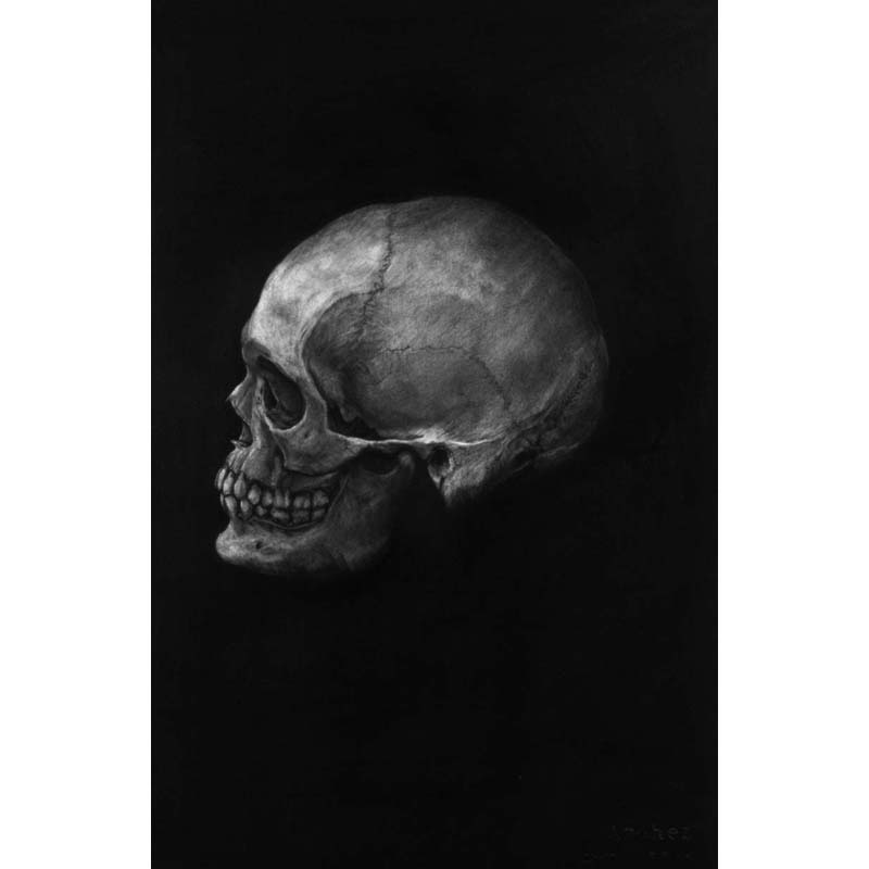 The unknown skull 01-01