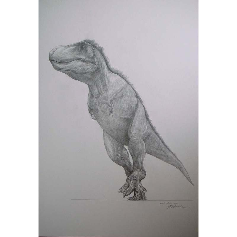 Tyrannosaurus rex エスキース
