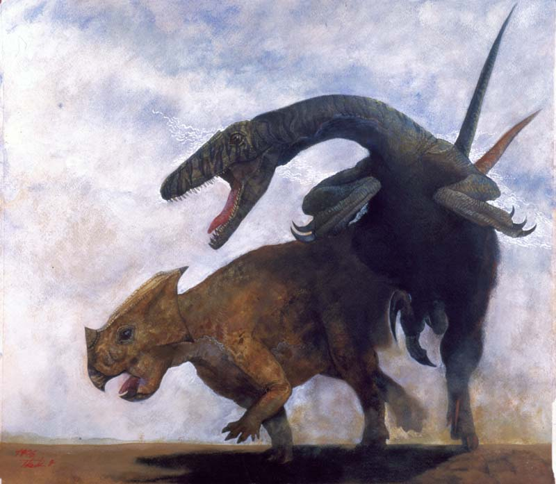 Bagaceratopsを襲うVelociraptor