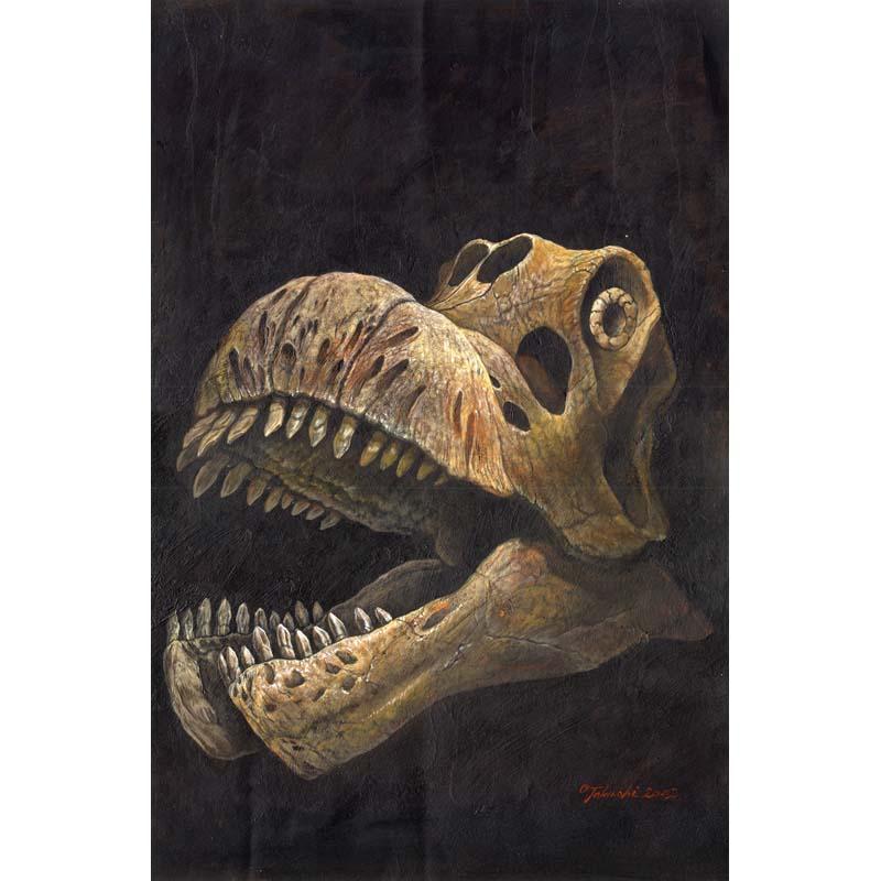 テトリティタン頭骨
